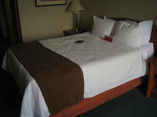 Ramada Saskatoon: Bed in the room