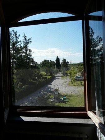 Agriturismo Le Volpaie II: vue depuis la fenêtre