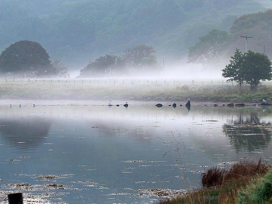 Seafield Farm Cottages : Mystical Morning
