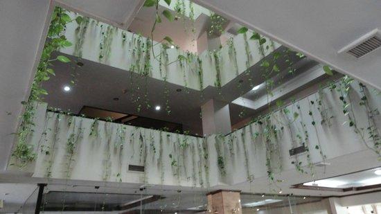 Toborochi Suites : Parte del corredor