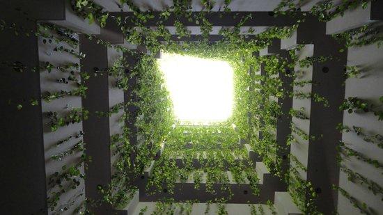 Toborochi Suites : Corredor, vista desde el primer piso para arriba