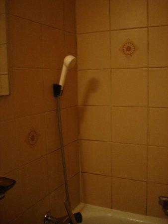 Hotel Lowen : душ
