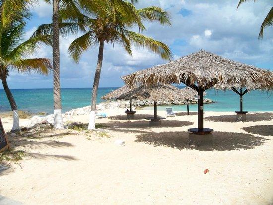 Flamingo Beach Resort : beach views