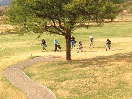 Windhoek Country Club Resort: Velofahren auf dem Fairway erlaubt !