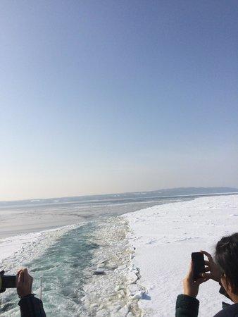 Abashiri Sightseeing Icebreaker Aurora : 海一面の流氷