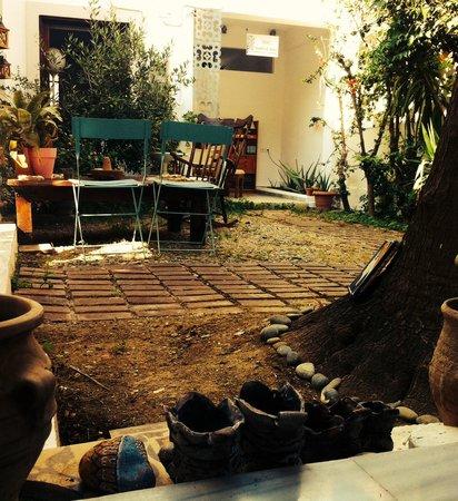 Tree of Life Art Hotel : Little garden
