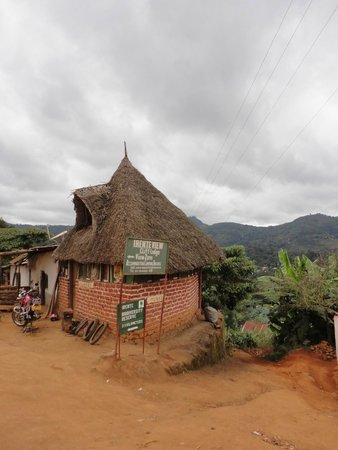 Usambara Mountains: Road leading to the Irente Biodiversity Reserve, a wonderful place to stay