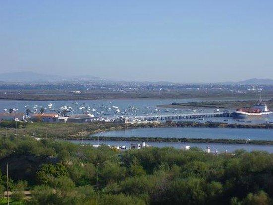 San Fernando, Španělsko: Vista del muelle de Gallineras desde El Cerro