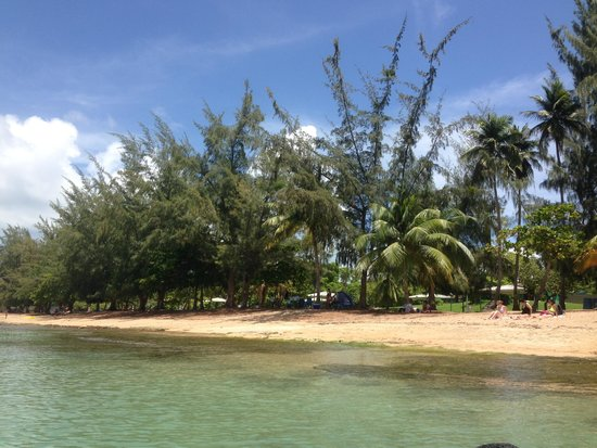 Seven Seas Beach : Beautiful beach