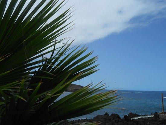 Sol Costa Atlantis : TENERIFE