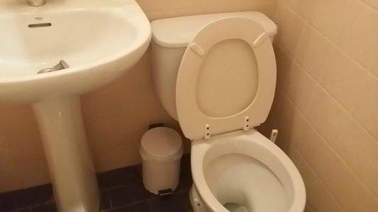 Appia Hotel: wc
