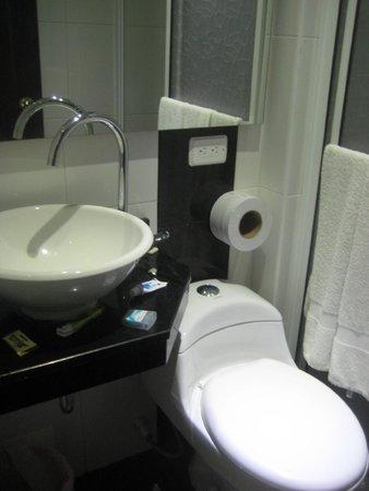 Hotel Villa Colonial: bathroom ok