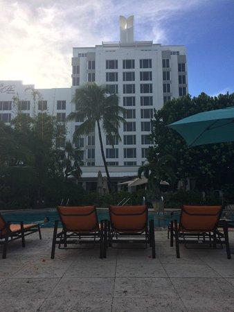 The Palms Hotel & Spa : Blick vom Pool