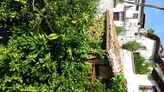 Hotel Nasho Vruho: The garden