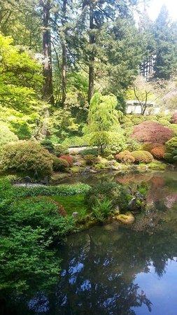japanese botanical garden Picture of Portland Japanese