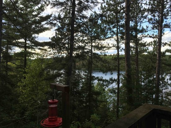 Temagami Shores Inn & Resort: View from cabin 38