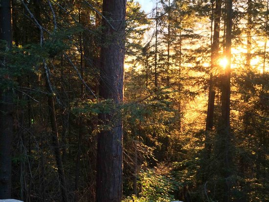 Temagami Shores Inn & Resort: View of sunset from Cabin 38