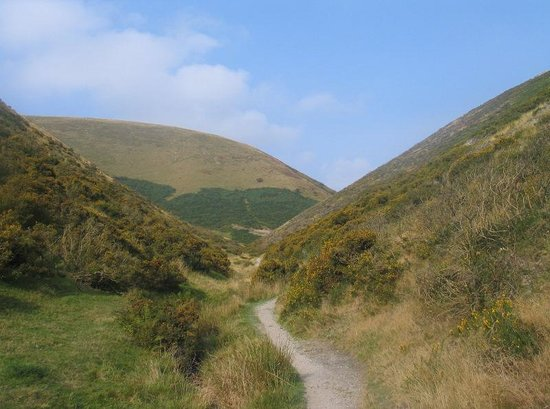 The Longmynd: Local walk, Townbrook Valley