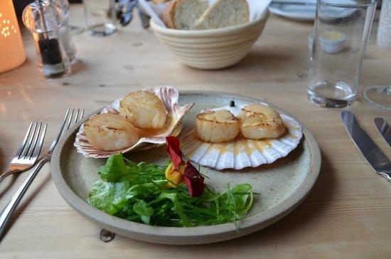 Coruisk House: Scallop main course