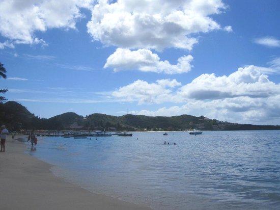 Grand Anse Beach: La plage de Grand Anse à gauche