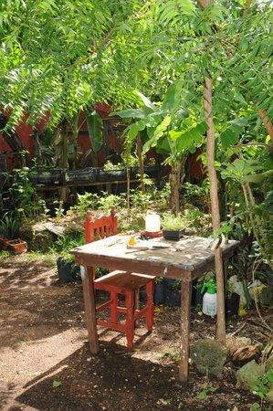 Don Diego de la Selva: Jardin