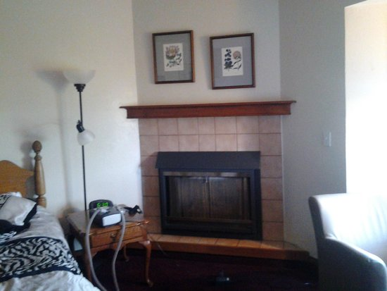 Hilltop Inn & Suites: fireplace in the room