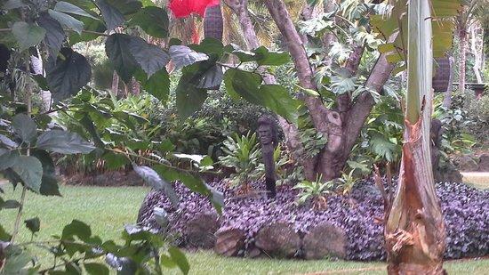 Tokoriki Island Resort: giardini
