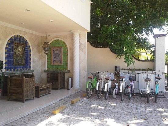 Excel Sense Playacar Boutique Hotel : En la puerta del hotel