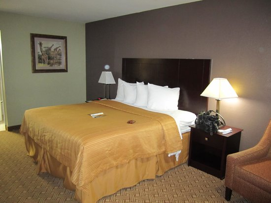 Quality Inn & Suites By The Parks: King Bed
