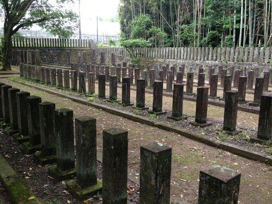 Tabaruzaka Park: 1Kmほど先にある官軍墓地