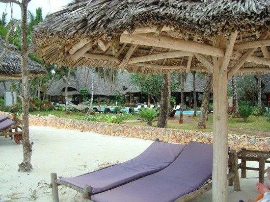 Kiwengwa Villaggio: dalla spiaggia