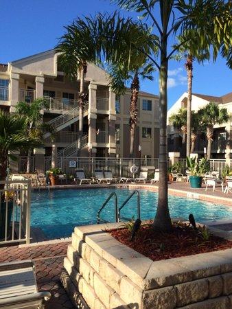 piscina picture of staybridge suites lake buena vista. Black Bedroom Furniture Sets. Home Design Ideas