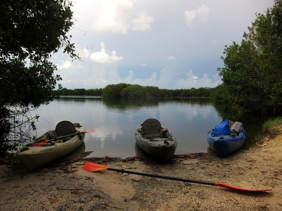 Shurr Adventures Everglades: Our kayaks for the morning