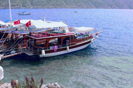 Cengizhan Boat Trips