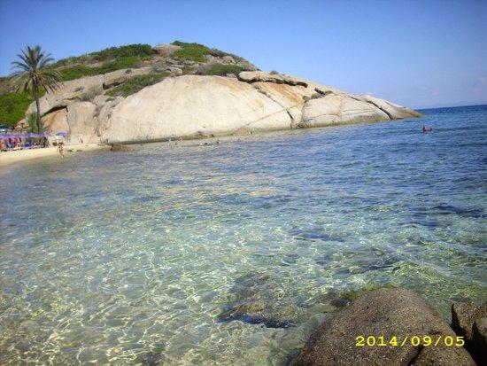 Isola del Giglio Diving Club