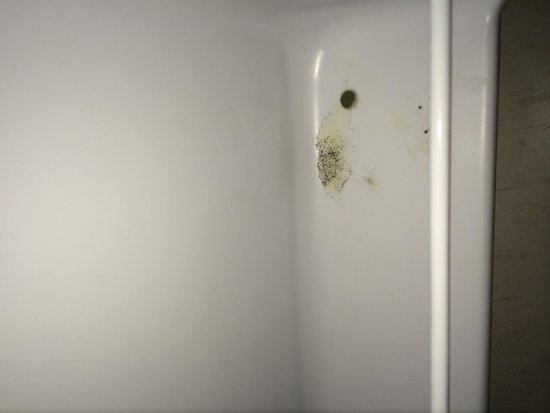 Bay View Villa: Mouldy fridge