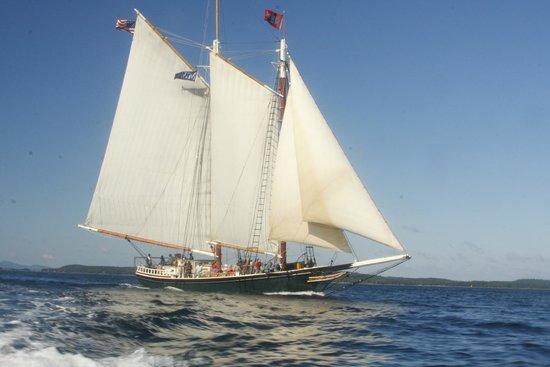 Schooner Stephen Taber Day Cruises: Stephen Taber under sail