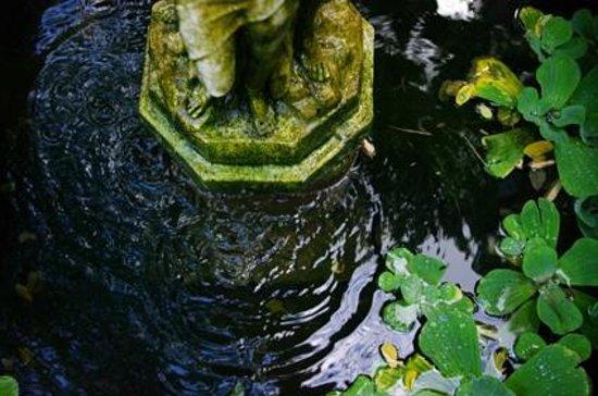 Statue picture of le jardin d 39 eden tournon sur rhone for Le jardin d eden