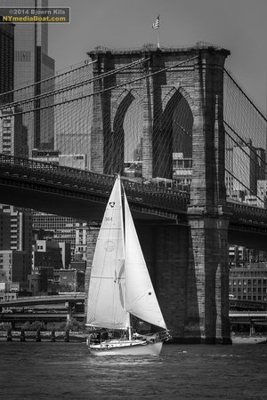 Narwhal Yacht Charters : The Genesis sailing underneath the Brooklyn Bridge!  Photo courtesy of Bjoern Kils.