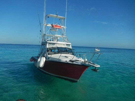 Playa Azul Golf, Scuba, Spa: Deep Sea Fishing with Blue Dream (located at the hotel)