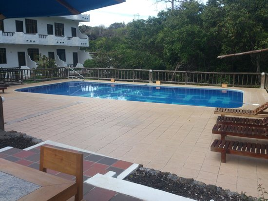 Hotel Fiesta: Pileta
