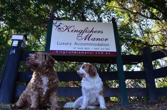 Kingfishers Manor: Entrance Signage