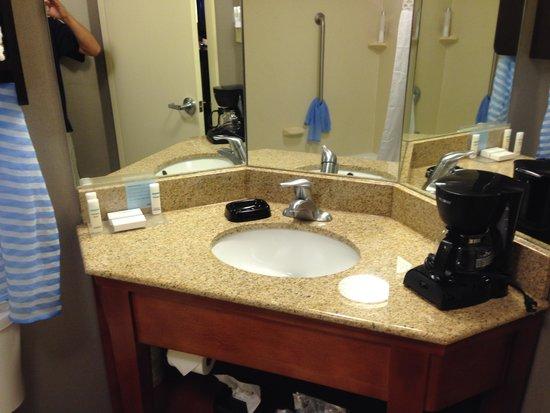 Hampton Inn Cadillac : 洗面所