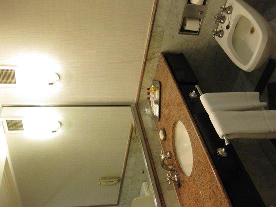 Sheraton Buenos Aires Hotel & Convention Center : El baño