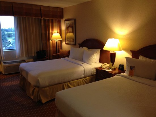 Hilton Garden Inn Detroit-Southfield: 部屋