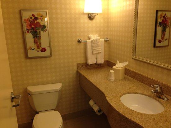 Hilton Garden Inn Detroit-Southfield: 洗面所