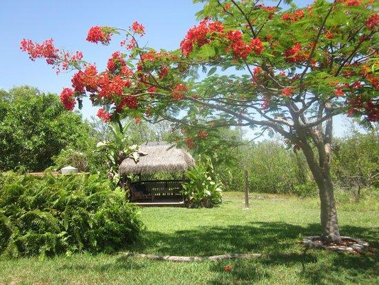 Navy Lodge Key West: Beside the Lodge