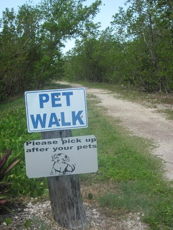 Navy Lodge Key West: Pet Walk on Sigsbee near Navy Loddge