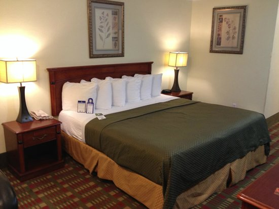 Best Western Garden Villa Inn: King Bed