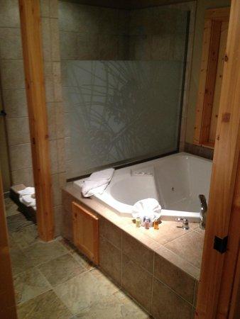 Best Western Ponderosa Lodge: Spa Tub & Shower